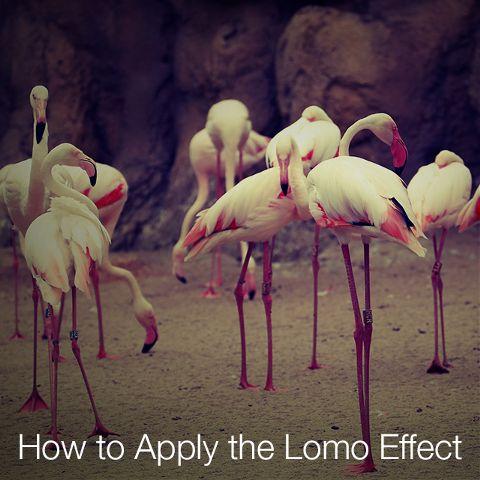 photo editing lomo effect