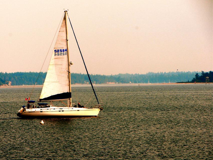 Sail Away ... #boat ##photography