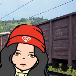няпока мем прикол ринапанекова поезд