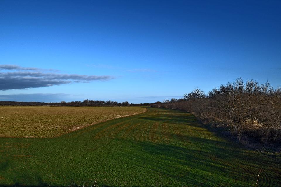 #farmland #field #farm