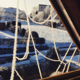 ice snow spiderweb winter crystals