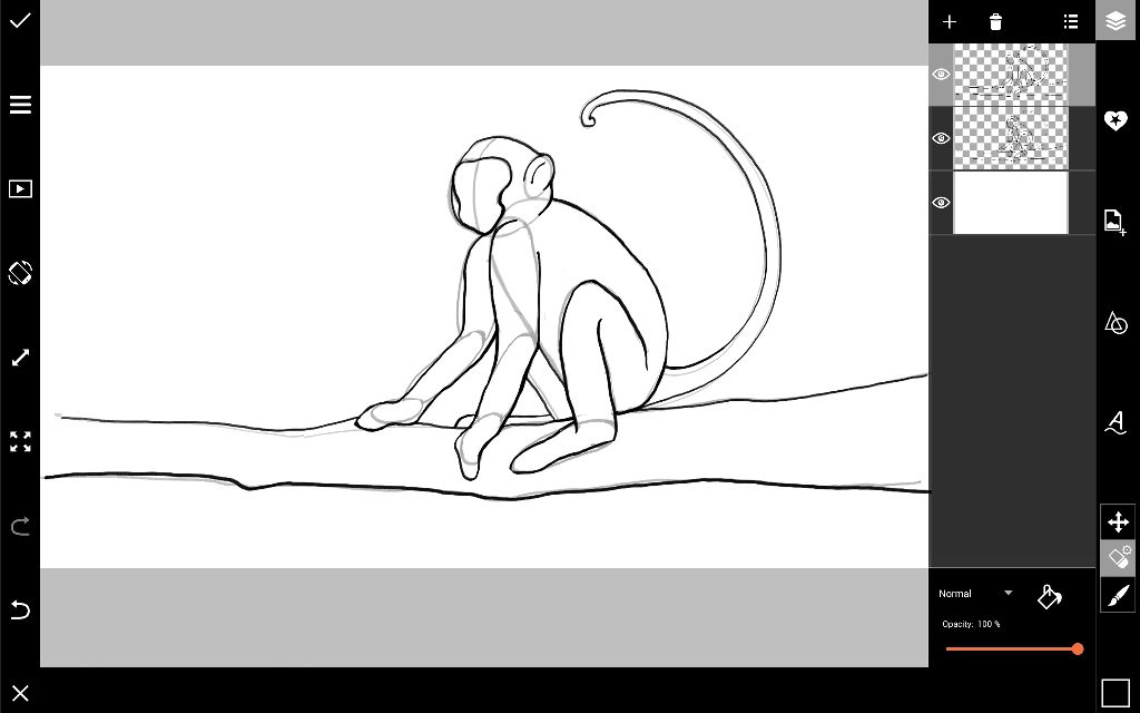monkey drawing outline