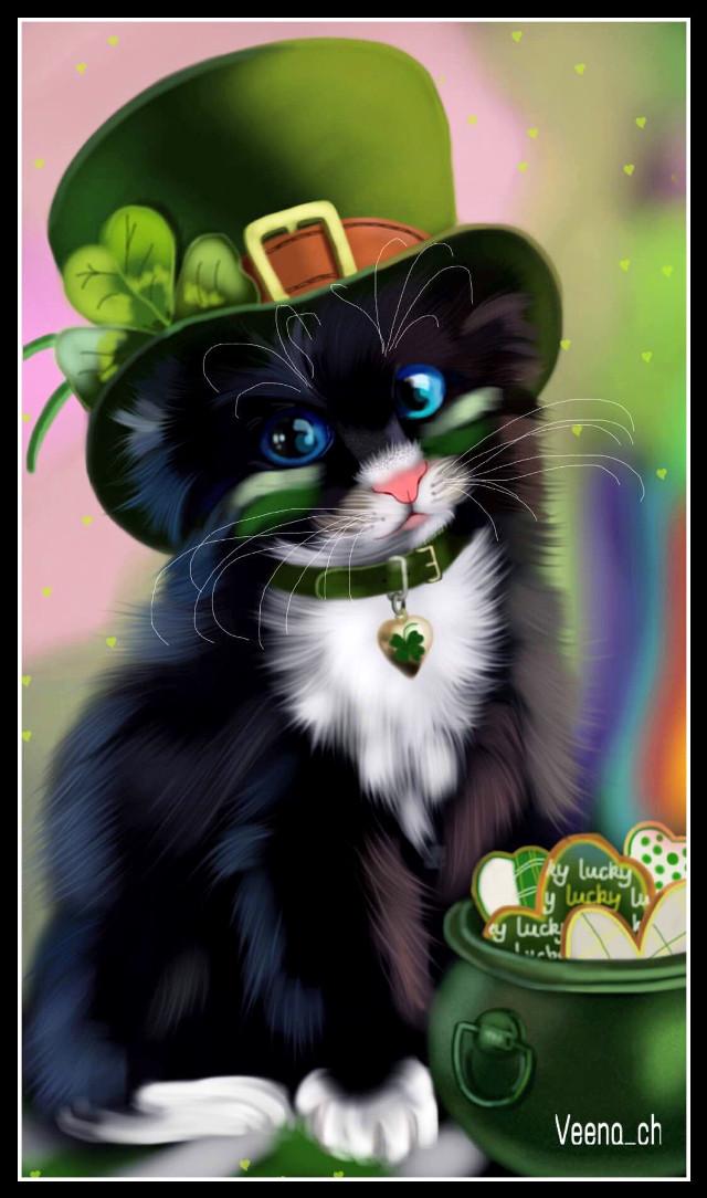#wdpleprechaun #cat #petsandanimals #pet   #drawing #mydrawing #art #digitalart #digitaldrawing #leprechaun #stpatricksday   Web reference used #wdpblackcat