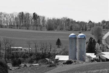 farm silos fields farmlife trees