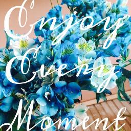 enjoy every moment flowers