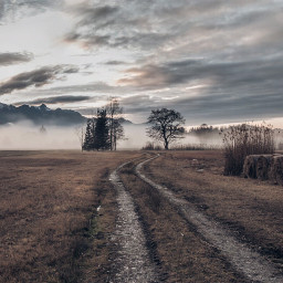 photography nature fog rural landscape countryside road path germany alps