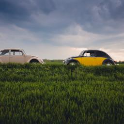 FreeToEdit nature car view vintage stylish sky field